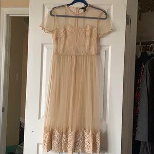 Sheer cover dress